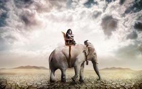 Обои слон, девушка, пустыня
