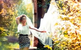 Картинка девушка, вуаль, лето, настроение, свет