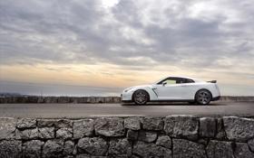 Обои дорога, дороги, Nissan, авто обои, ниссаны, GT-R Egoist