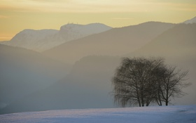 Картинка зима, лес, снег, деревья, горы, туман, утро