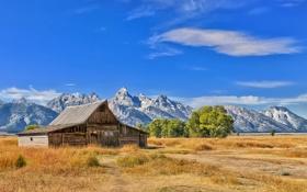 Картинка зелень, трава, деревья, горы, дом, старый, солнечно