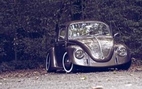 Картинка осень, природа, ретро, Volkswagen, Beetle