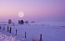 Картинка зима, поле, снег, ночь