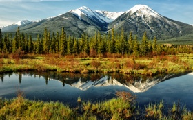 Обои forest, water, mountains, reflection, mirror