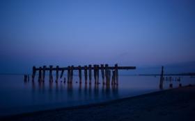 Картинка пляж, небо, птицы, ночь, озеро, берег, чайки