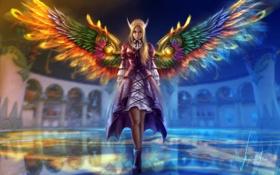Обои арт, крылья, девушка, фэнтези, эльфийка