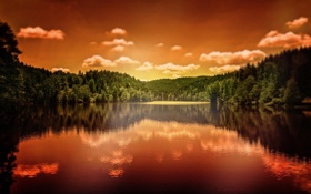 Обои природа, отражение, ели, водоём, Sandra Dombrovsky