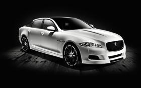 Обои 327, Jaguar, белый, XJ75