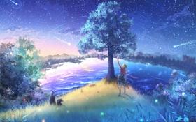 Картинка небо, звезды, город, дерево, животное, мальчик, шарф