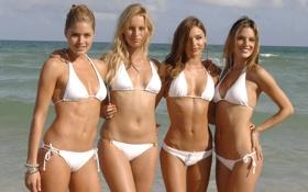 Обои море, пляж, купальник, девушки, океан, трусики, модели