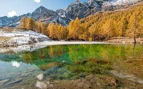 Картинка зима, лес, снег, горы, озеро, отражение