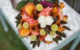 Обои цветы, розы, букет, каллы, свадебный