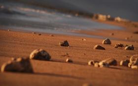 Обои камни, камень, вода, пляжи, песок, побережье, берег
