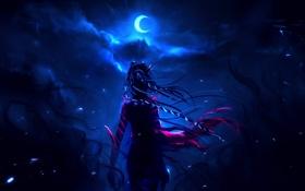 Картинка девушка, ночь, ветер, волосы, арт, спиной, полумесяц
