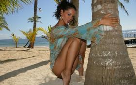 Обои песок, пейзаж, пальмы, океан, брюнетка, W4B, Angel Dark