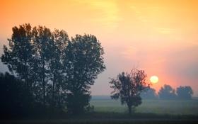 Картинка осень, небо, закат, диск