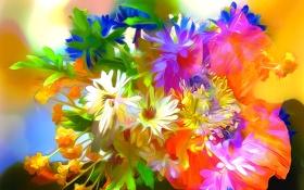 Обои линии, цветы, абстракция, краски, лепестки