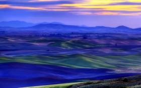 Обои поле, пейзаж, закат
