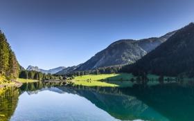 Картинка лес, горы, Austria, озеро, Tyrol, Near Tannheim