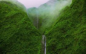 Обои природа, лес, горы, водопад