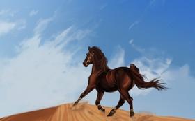 Обои лошадь, бег, песок, мустанг, вороной, пустыня, дюна