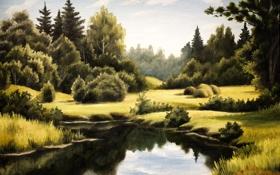 Обои облака, трава, небо, лето, озеро, листья, живопись