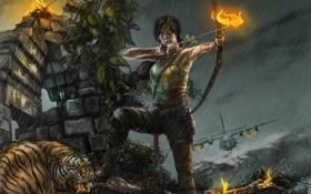 Обои девушка, тигр, самолет, лук, Tomb Raider, стрелы, лара