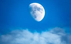 Обои небо, облака, луна, спутник
