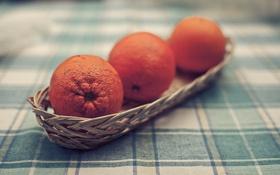 Обои стол, обои, апельсины, скатерть