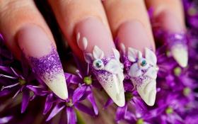 Обои цветы, ногти, Маникюр