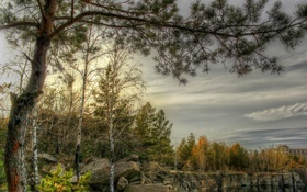 Обои осень, парк, деревья, водоем, камни