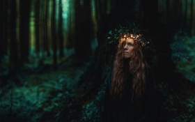 Картинка лес, девушка, ночь
