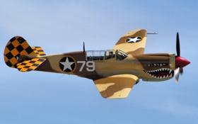 Обои полет, истребитель, Warhawk, P-40N