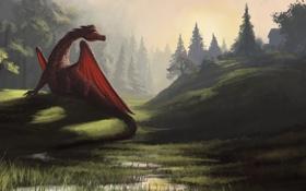 Картинка лес, трава, природа, холмы, дракон, арт, речка
