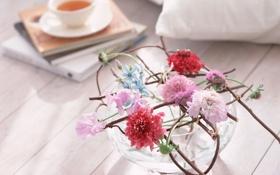 Обои цветы, стиль, ваза, Flowers, композиция