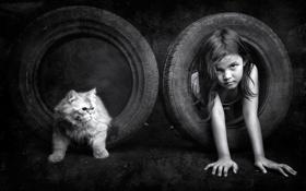 Картинка кошка, покрышки, девочка