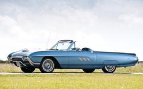 Обои небо, трава, синий, Ford, Форд, передок, 1963