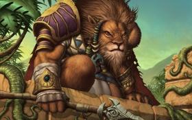 Обои лев, доспехи, джунгли, копье