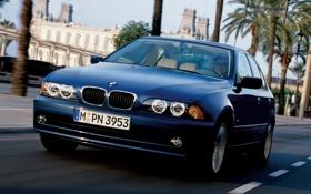 Обои машина, бмв, BMW, передок, бумер, E39, Sedan