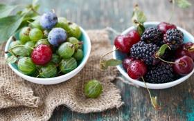 Обои ягоды, сливы, крыжовник, вишни, черешни, шелковица