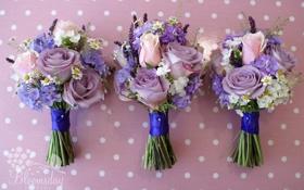 Обои левкой, букеты, флоксы, ромашки, розы, цветы