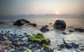 Картинка море, камни, рассвет, мох