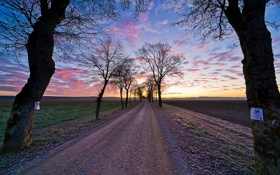 Обои дорога, небо, трава, облака, деревья, пейзаж, закат