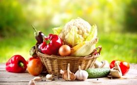 Обои зелень, природа, стол, корзина, гриб, кукуруза, огурец