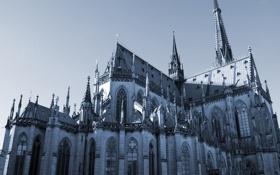 Обои готический, собор, окна, витражи, Gothic, архитектура, башни