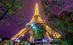 Обои деревья, ночь, огни, люди, Париж, башня, вечер