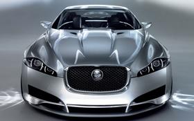 Обои c xf, concept front, jaguar
