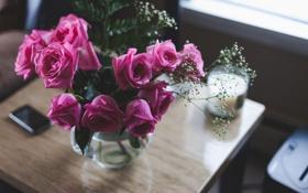 Обои розы, лепестки, розовые, цветы
