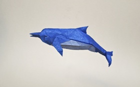 Картинка дельфин, оригами, origami, dolphin, blue dolphin, голубой дельфин