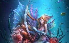 Обои русалка, арт, арфа, подводный мир, плавники, музыкальный инструмент